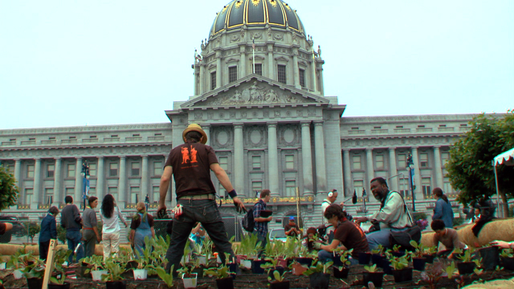 City_Hall_Planting_day.png